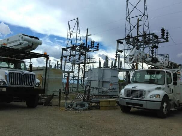T or C's electric yard