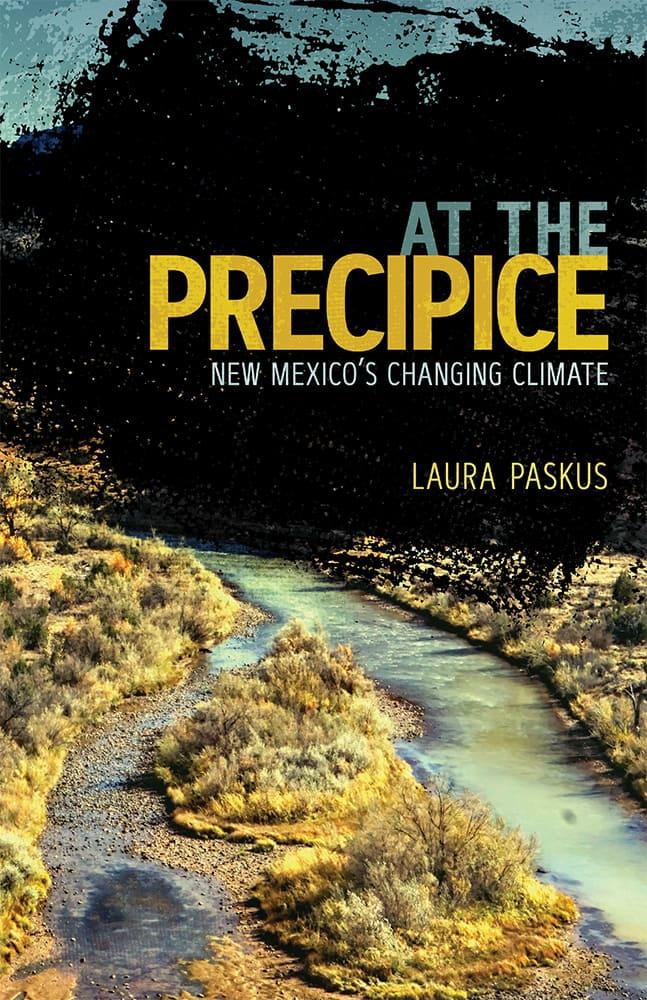 At the Precipice book cover